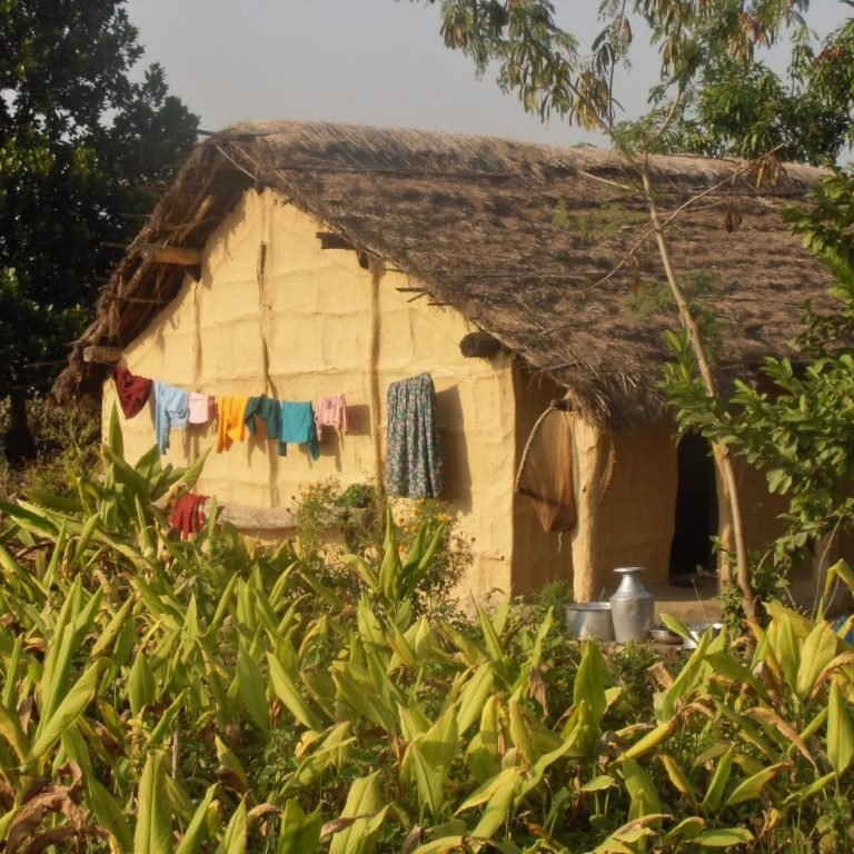 Tharu house countryside Bardia National Park
