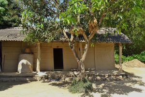 tharu house bardia homestay