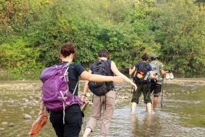 Jungle walk Bardia National Park