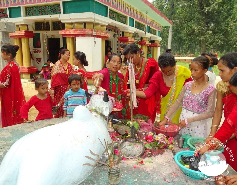 Teej temple offers Bardia